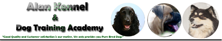 Alan Kennel and Dog Training Academy